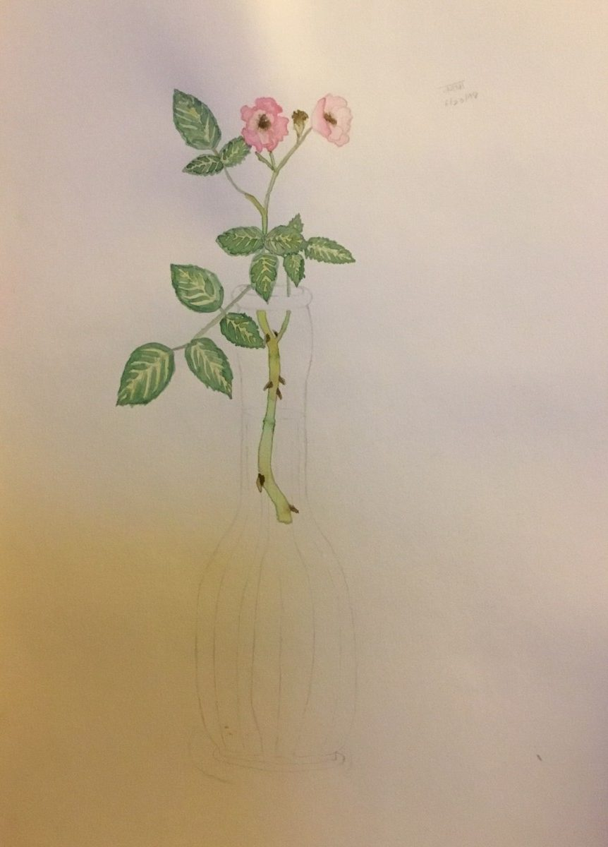Rose in Vase, by Varsha Mathrani, watercolor on paper
